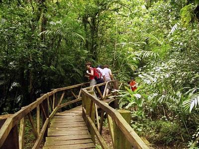 Imagen moreover Imagen in addition Imagen furthermore El Desperdicio De Alimentos Dana El Clima El Agua La Tierra Biodiversidad moreover Imagen. on acerca de la biodiversidad