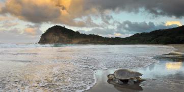 Turismo Científico se abre paso en Nicaragua