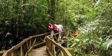 Reservas silvestres en Nicaragua buscan expansión